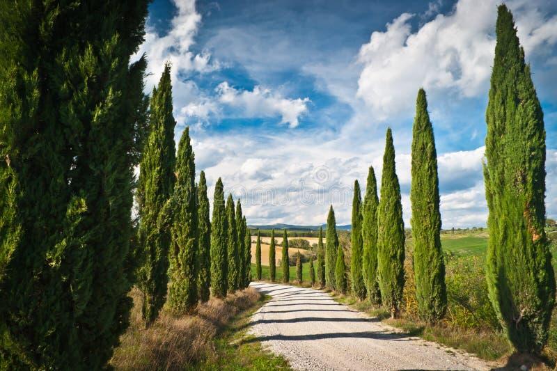 Download Tuscany Stock Photo - Image: 27169440