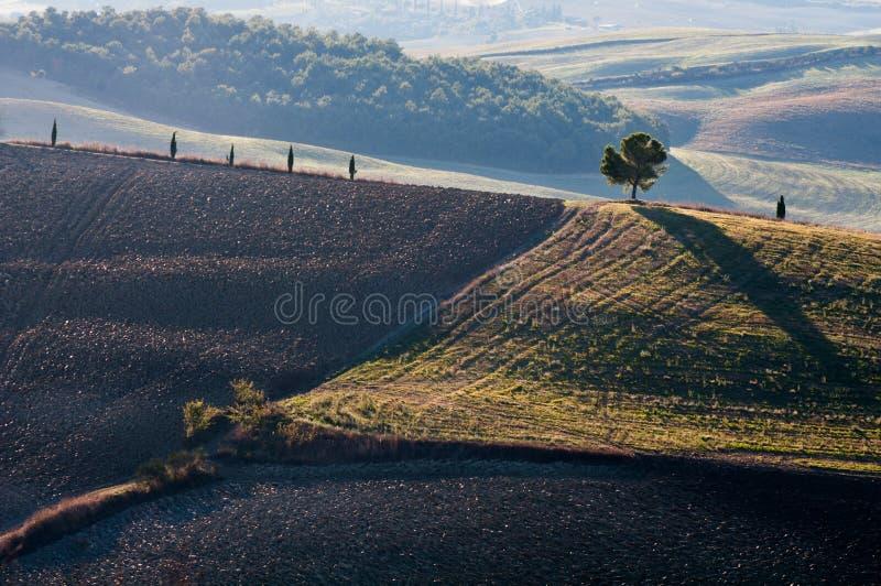 tuscany obrazy stock