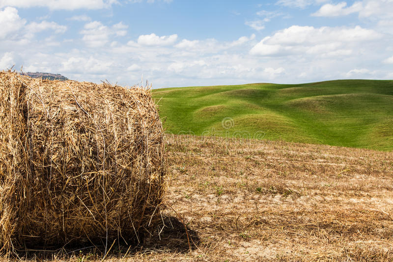 Download Tuscany agriculture stock image. Image of pienza, view - 39507707