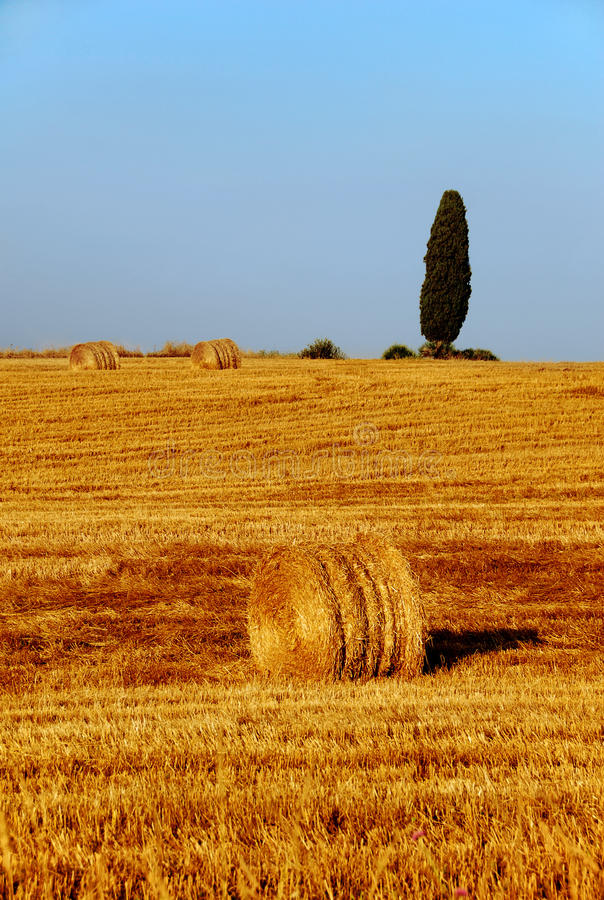 Free Tuscany Countryside Stock Images - 18996364