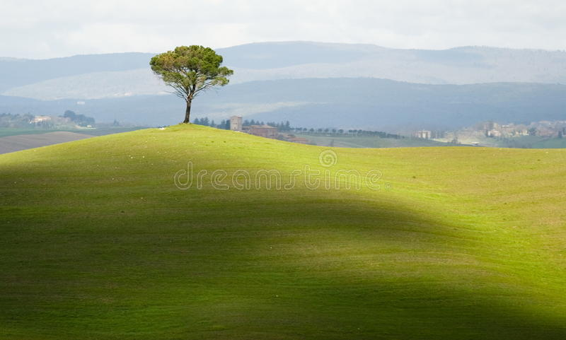 Tuscany countryside stock photos