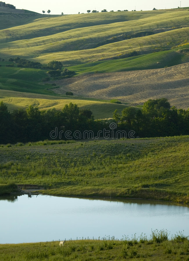 Free TUSCANY Countryside And Little Lake Stock Photo - 6321330
