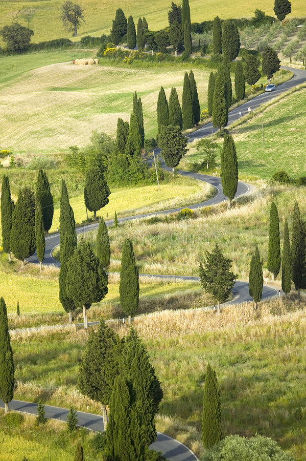 Free TUSCANY Countryside, Devious Street With Cypress Stock Images - 6366584