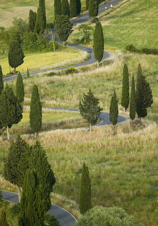 Free TUSCANY Countryside, Devious Street With Cypress Stock Image - 6366641