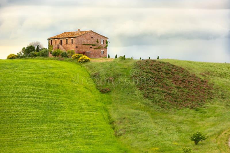 Tuscany dom wiejski z polami i kwiatami, Val d'Orcia, Włochy zdjęcia royalty free