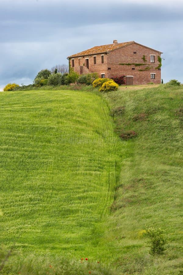Tuscany dom wiejski z polami i kwiatami, Val d'Orcia, Włochy obrazy stock