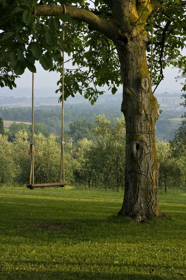 tuscany för tree för trädgårditaly swing vertical arkivfoton