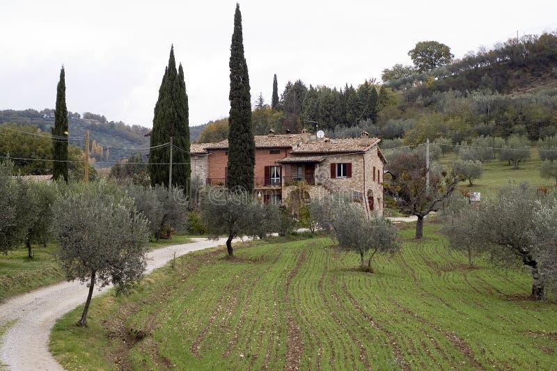 Tuscany farm - Italy stock photography