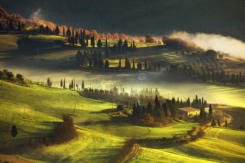 Tuscany foggy morning, farmland and cypress trees. Italy. stock photos