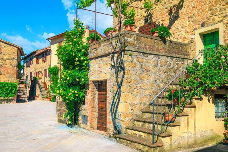 Tuscany gata och lantliga stenhus som dekoreras med rosor, Monticchiello arkivbild