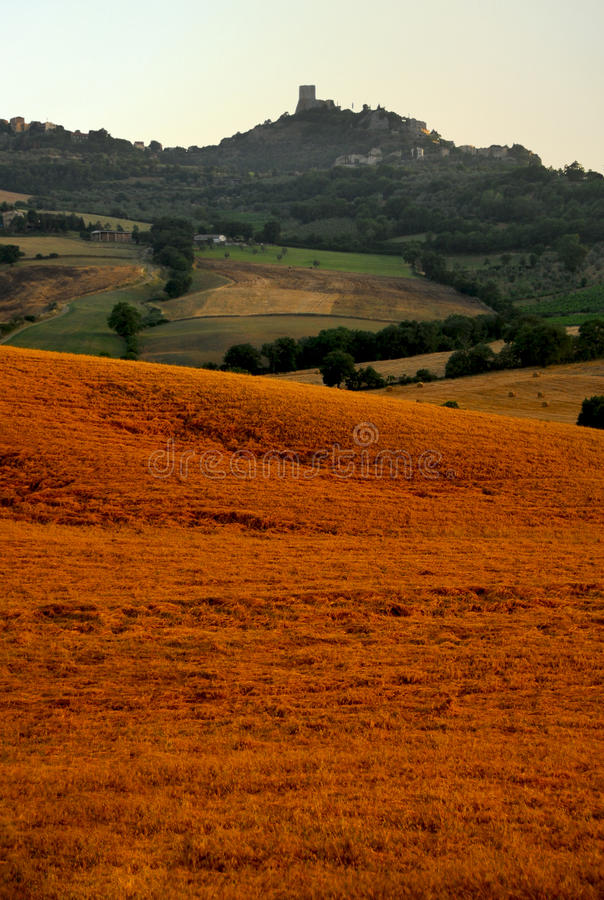 Tuscany Hill royalty free stock photo