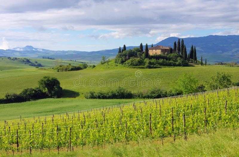 Download Tuscany house stock image. Image of rural, italian, pienza - 32067697