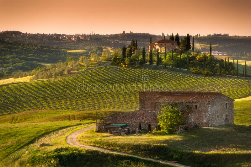 Download Tuscany - Italy stock image. Image of countryside, idyllic - 28604067