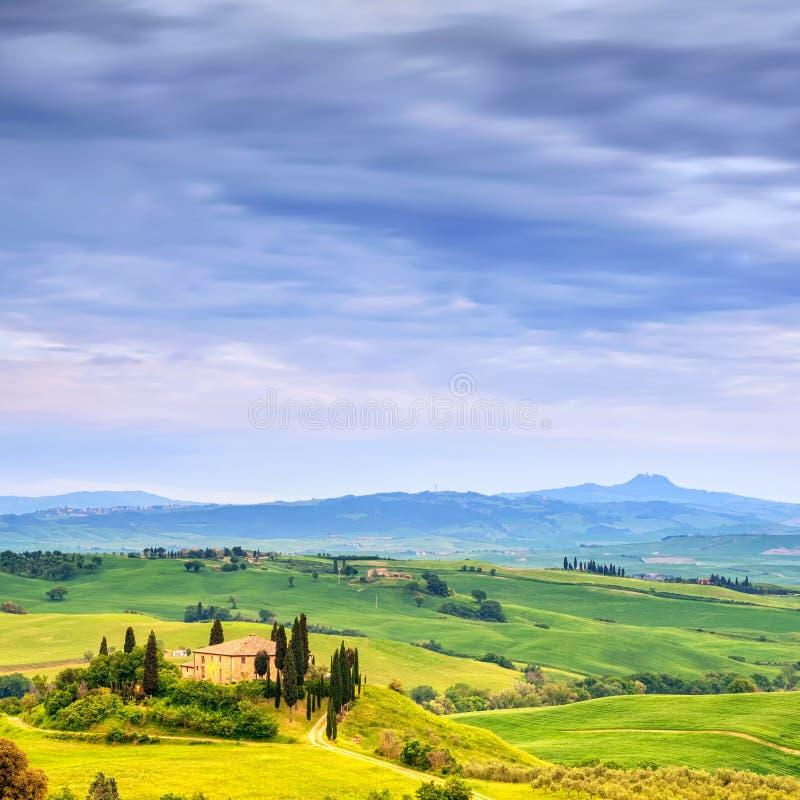 Tuscany, jordbruksmark- och cypressträd, gräsplanfält. San Quirico Orcia, Italien. royaltyfri bild