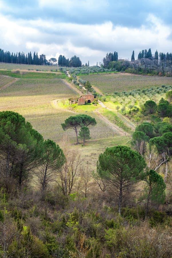 Tuscany krajobraz w wio?nie zdjęcie stock