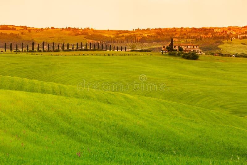 Tuscany krajobraz z polami i domem wiejskim, Pienza, Włochy zdjęcie royalty free