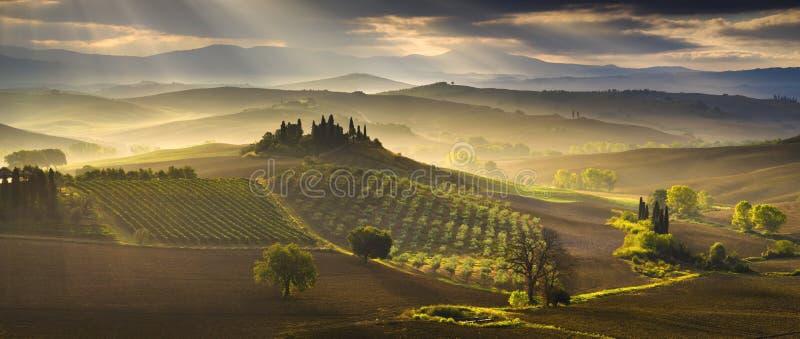 Tuscany Kształtuje teren, jesieni pole, Włochy, Val, d, Orcia obraz royalty free