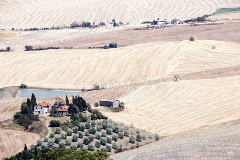 Download Tuscany landscape stock image. Image of grass, fresh - 25985527