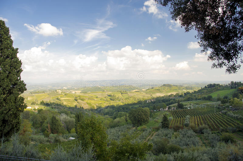 Download Tuscany landscape stock image. Image of italy, hill, grape - 29398539