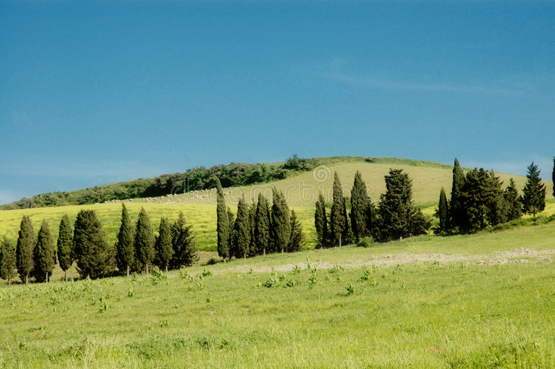Tuscany landscape. Scenic view over typical Tuscany landscape stock photo
