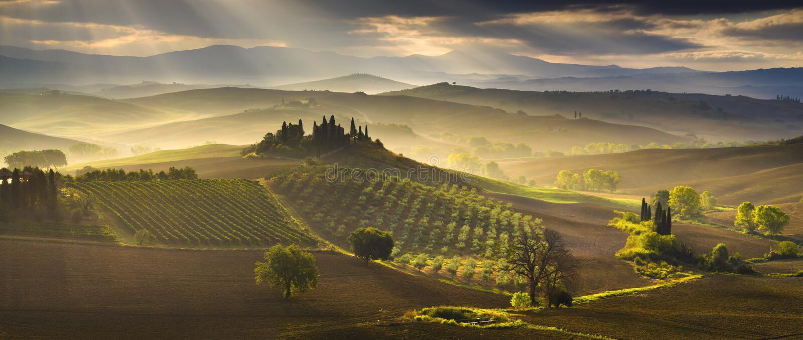 Tuscany Landscape,autumn field,Italy,Val,D,Orcia royalty free stock image