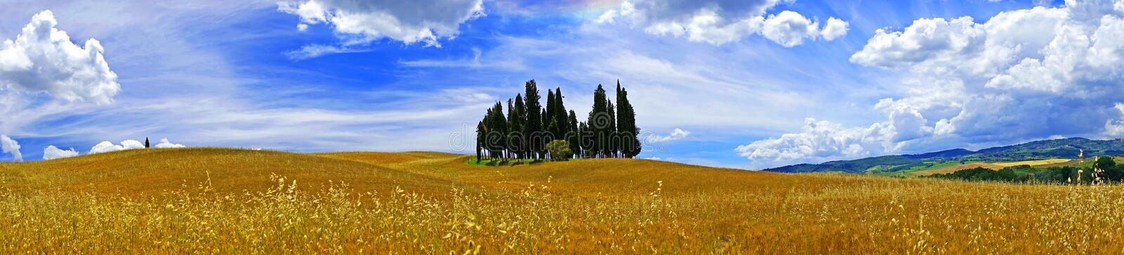 Tuscany landscape. Panorama, cypress trees oat fields royalty free stock photos