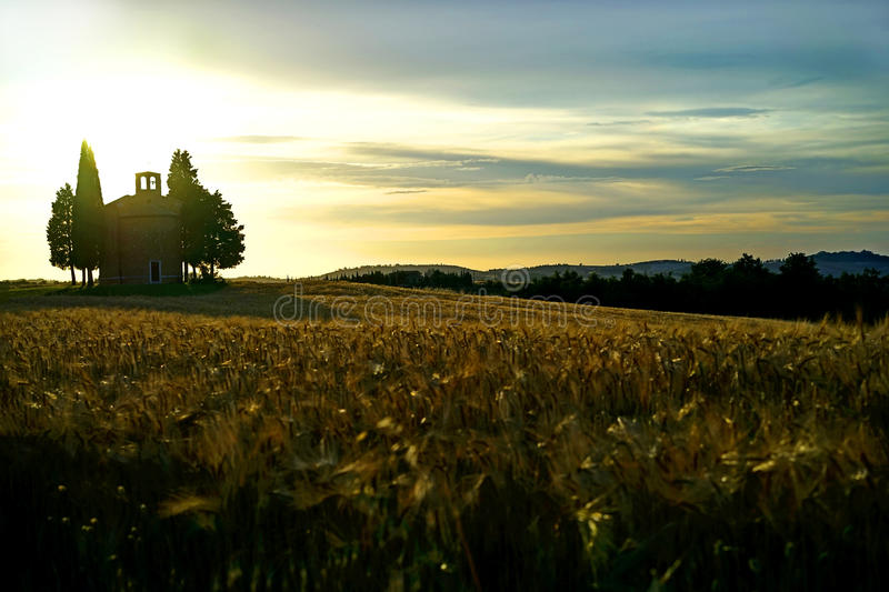 Tuscany landscape. Tuscany summer landscape, Cappella di Vitaleta royalty free stock images