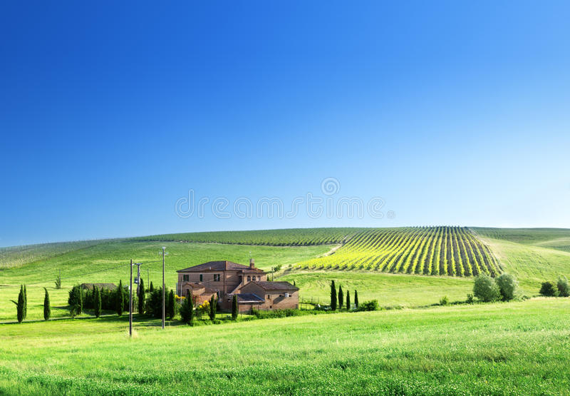 Download Tuscany Landscape With Typical Farm House Stock Image - Image: 30892749