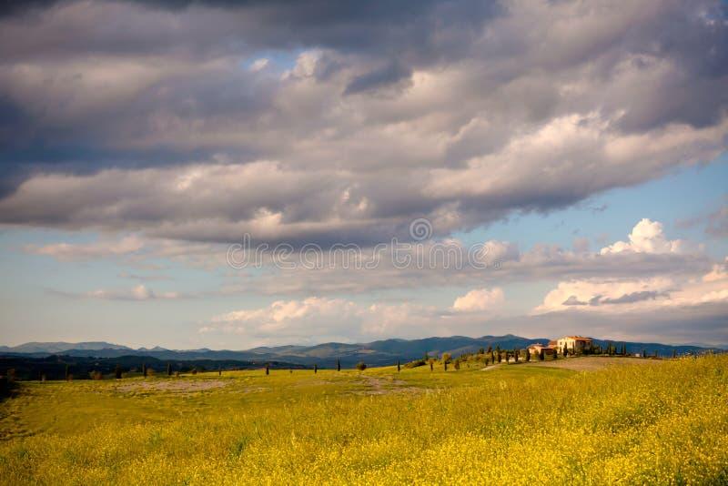 Download Tuscany landscape stock photo. Image of italy, beautiful - 35401498