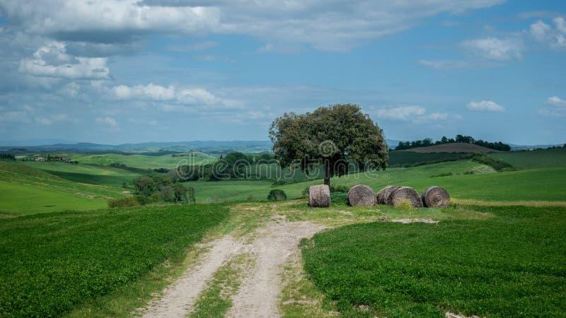 Tuscany landscaper ścieżki wiejskiej wsi Italy zielony błękit fotografia stock