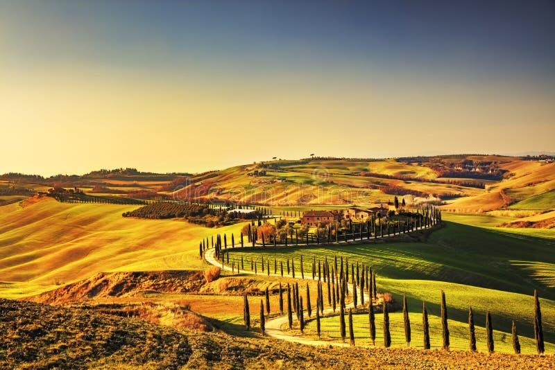 Tuscany landskap för KretaSenesi lantligt solnedgång Bygdlantgård, arkivbilder