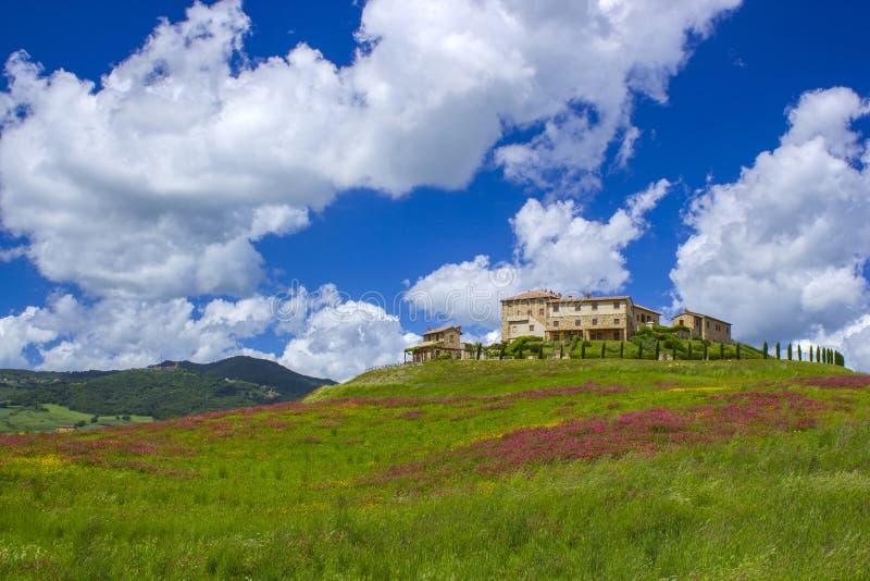 Tuscany - landskap med vårblommor royaltyfri fotografi