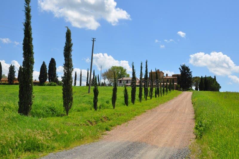 Tuscany lantbrukarhem nära Pisa arkivbild