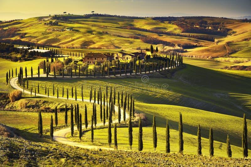 Tuscany lantligt solnedgånglandskap Bygdlantgård, vit väg royaltyfri fotografi