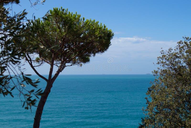 Tuscany morza widok obrazy stock