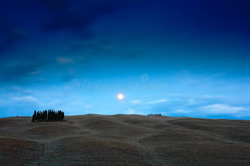 Tuscany night landscape, moon with tree on the fiedl, dark blue sky with stars, night wavy hills landscape, Italy stock photography