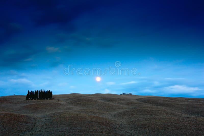 Tuscany nocy krajobraz, księżyc z drzewem na fiedl, zmrok - niebieskie niebo z gwiazdami, nocy faliści wzgórza krajobrazy, Włochy fotografia stock