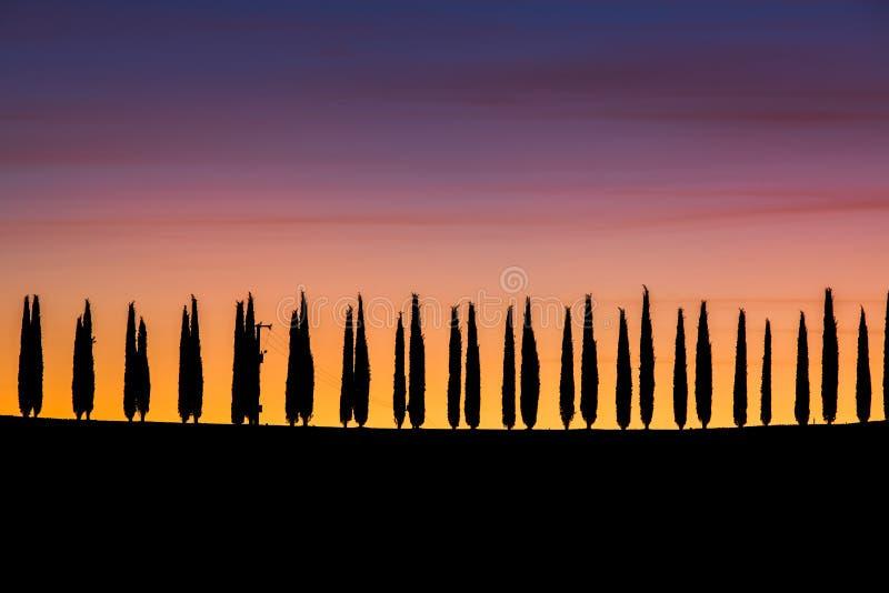 Tuscany, panoramiczny krajobraz z cyprysem w pięknym wschodzie słońca ja fotografia stock
