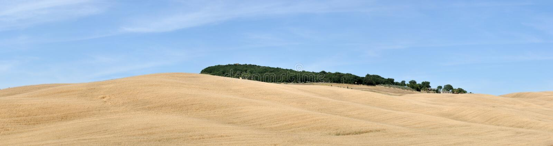 Tuscany panoramy wzgórza i pola zdjęcie stock