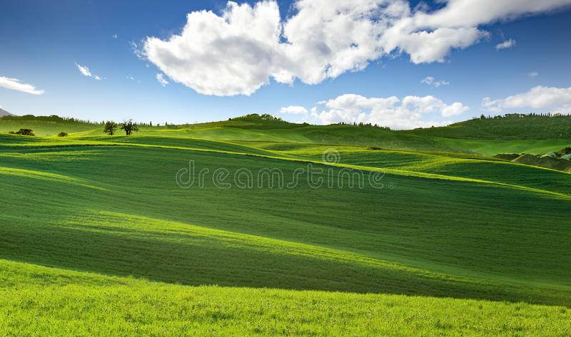 Tuscany rolling hills in springtime stock photography