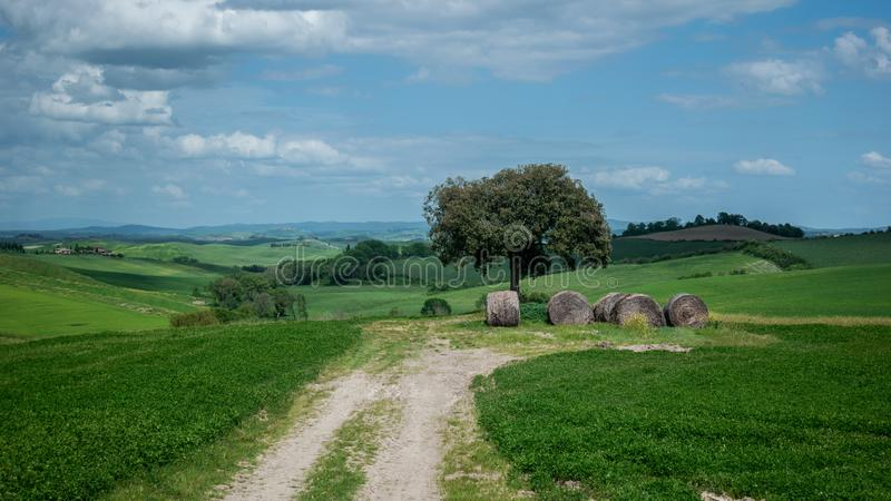 Tuscany rural landscaper path countryside italy green blue stock photography