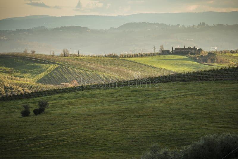 Tuscany ` s kraj w zimie i winnicy, przy zmierzchem obraz stock