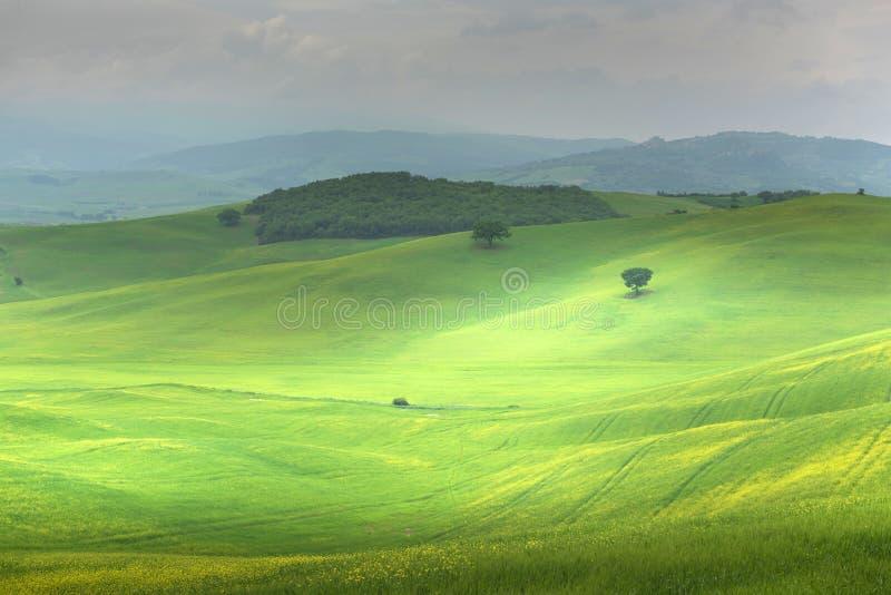 Tuscany som är lantlig landskap Bygdlantgård, cypressträd, grönt fält, molnig dag royaltyfri fotografi