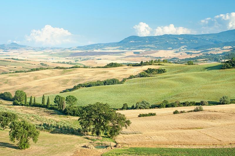 Tuscany sommarlandskap arkivbild