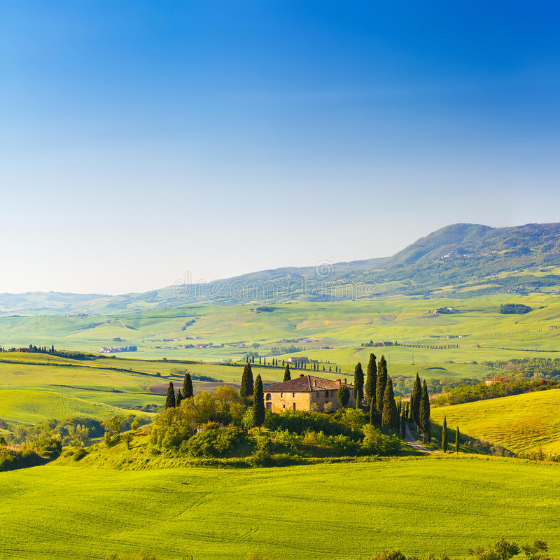 Download Tuscany at spring stock image. Image of amazing, peaceful - 42083569