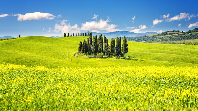 Tuscany at spring stock images