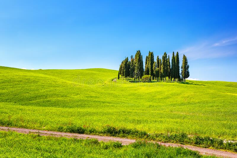 Tuscany at spring royalty free stock image