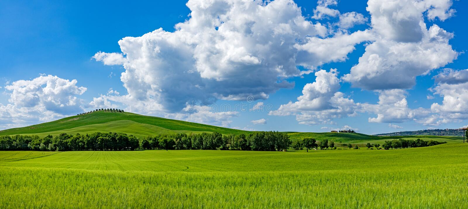 Tuscany spring, rolling hills on spring . Rural landscape. Green fields and farmlands. Italy, Europe royalty free stock images