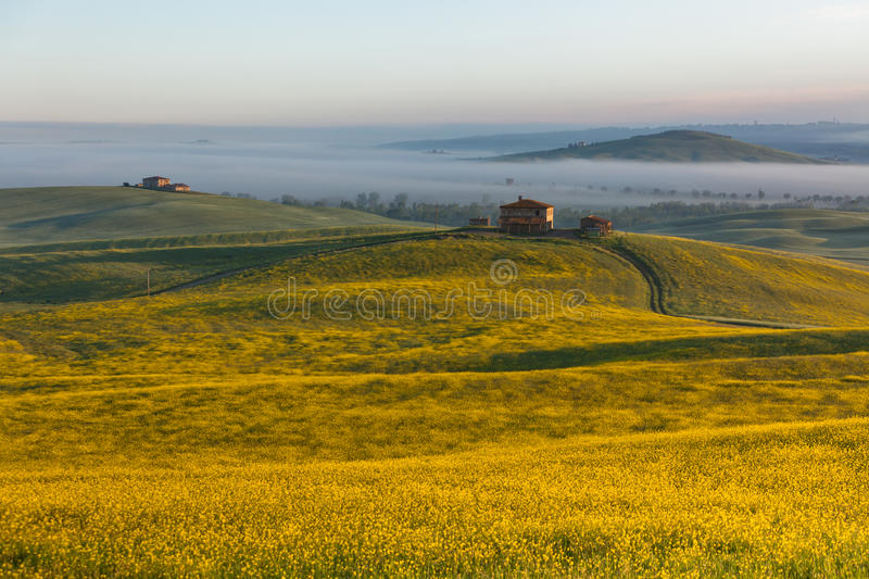 Download Tuscany at sunrise stock image. Image of over, field - 25947153