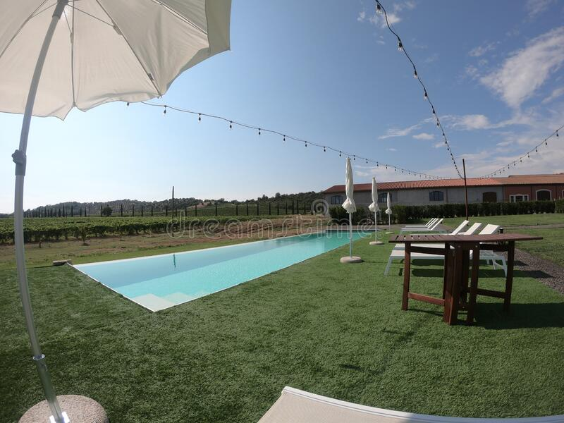 Tuscany swimming pool in the vineyards stock photo